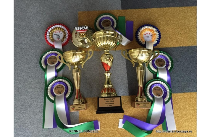 29-30.09.2018 International Dog Show 2*CACIB Austria Tuln